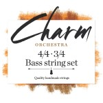 FS_charm_bass-orchestra