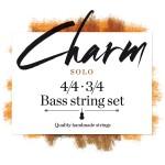 FS_charm_bass-solo