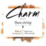 FS_charm_bass-solo-a