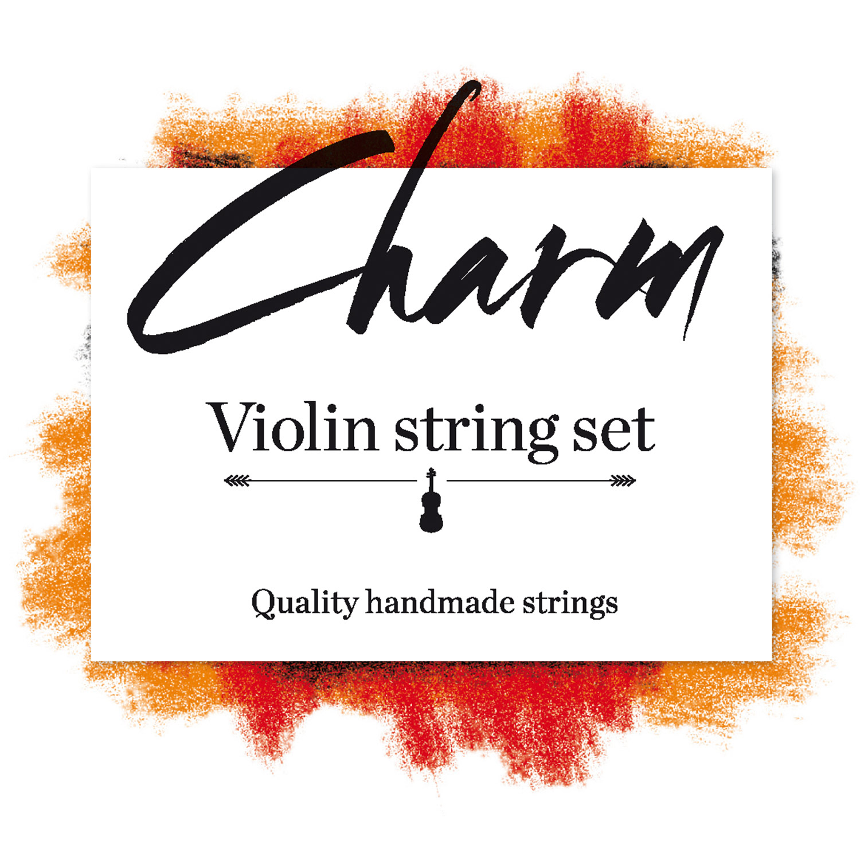 Charm Violin 4/4 Set